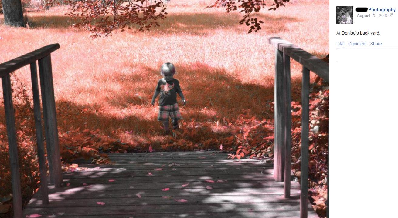 red yard